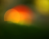 Gazing ball sun