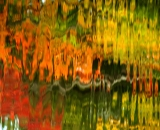 Water reflections - 09