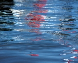 Water reflections - 07