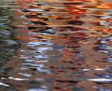 Water reflections - 11