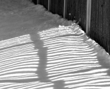 fence-shadows-on-snow_B-W 01030