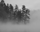 fog-on-lake-auburn_B-W 01012