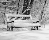 garden-bench-covered-in-snow_B-W 01036
