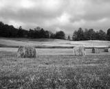 rolled-hay-bales-in-field_B-W 02021