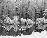 snow-covered-trees-along-Sabattus-River-B-W 02008
