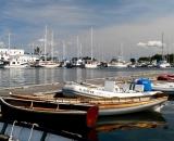 dories-and-sailboats-in-Camden-Harbor_P1080405