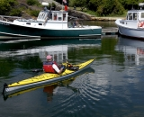 Kayaking in the harbor