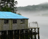fishing-shack-in-Cutler-Harbor_P1060802