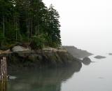foggy-coast-Cutler-Harbor_P1060795