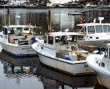 lobster-boats-at-dock_DSC04177