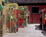 lobster-traps-on-dock_COS 134