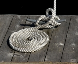 Neatly coiled rope on dock