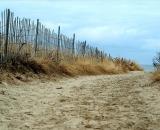 sandy-walkway-among-dune-grass_DSC05355