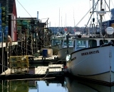 lobster-boats-and-traps-along-Portland-waterfront_DSC03807