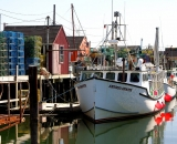 lobster-boats-and-traps-along-Portland-waterfront_DSC03816