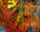 fall-foliage-abstract-reflections-on-water_DSC02574