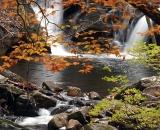 Fall Foliage with waterfall - 02