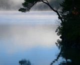 early-morning-fog-with-tree-silhouette-on-Moxie-Lake_P1090618
