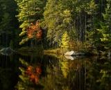 edge-of-northern-Maine-pond-in-autumn_DSC00329