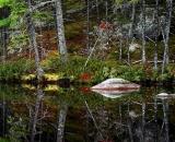 edge-of-northern-Maine-pond_DSC00285