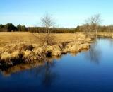 stream-and-field-in-late-autumn_DSC01043