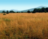 autumn-field-with-distant-mountains_SCE 254