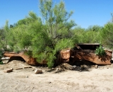 rusted-out-car-in-the-desert_DSC06538