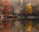 Androscoggin-River-bank-in-autumn_DSC06670