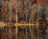 Androscoggin-River-bank-in-autumn_DSC06671