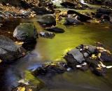 Mosquito-Brook-in-autumn_DSC08734