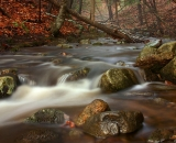 bobbin-mill-brook-in-autumn_DSC06916