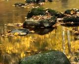 bobbin-mill-brook-in-autumn_DSC09024