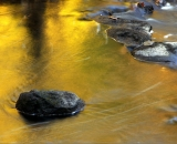 rocks-in-autumn-stream_DSC09980
