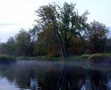 fog-at-dawn-on-Bog-Brook-DSC00156