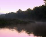 fog-at-dawn-on-Bog-Brook_DSC00156