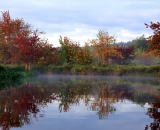 fog-at-dawn-on-Bog-Brook_DSC00207