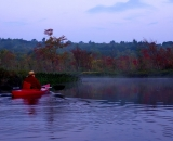 kayaker-at-dawn-on-Bog-brook_DSC00152