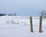Barbed wire fence in winter field