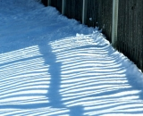 fence-shadows-on-snow_DSC04163