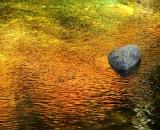 autumn-color-on-woodland-stream_DSC00867