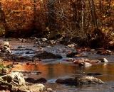 autumn-color-on-woodland-stream_P1090677