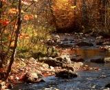 autumn-color-on-woodland-stream_P1090681