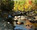 autumn-colors-at-Coos-Canyon_DSC00880