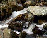 Woodland stream rushes over rocks-04