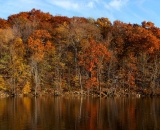 Autumn-on-the-Androscoggin-River-panorama_1