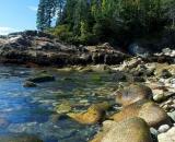 Soldier-Beach-Acadia-National-Park_DSC09147