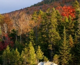 Baxter-State-Park-mountain-at-edge-of-pond_DSC00200