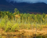 Baxter-State-Park-pond-with-mountain-shrouded-in-fog_DSC00083