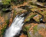 Bushkill Falls - 10