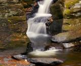 Bushill Falls - 16